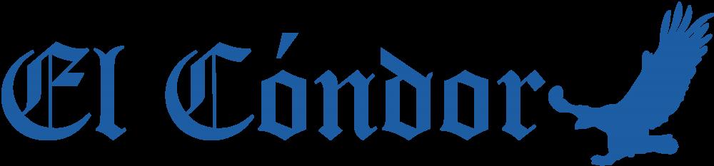 Diario El Condor